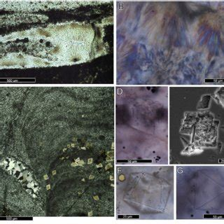 (PDF) Chemical and textural overprinting of ancient